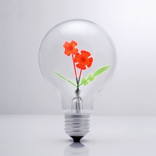 Rose - DS Light Bulb