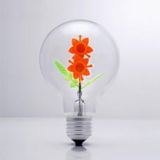 Sunflower - DS Light Bulb