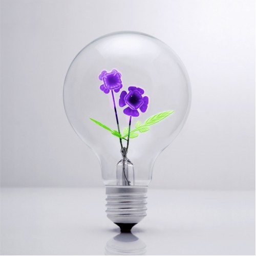 Violet - DS Light Bulb