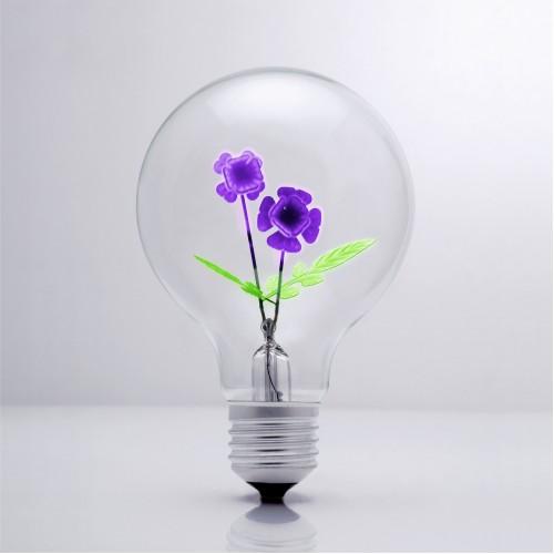 Violet - DS Light Bulb
